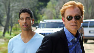 Das CSI: Miami-Team